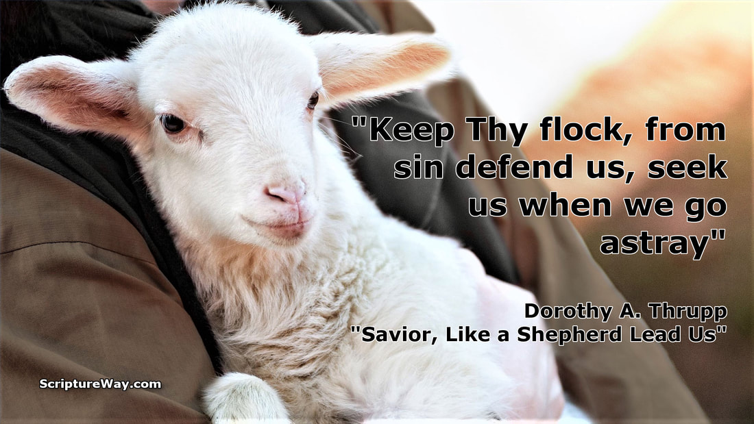 The Good Shepherd Seeks and Saves Lost Sheep - Copyright David Padfield - Used under license